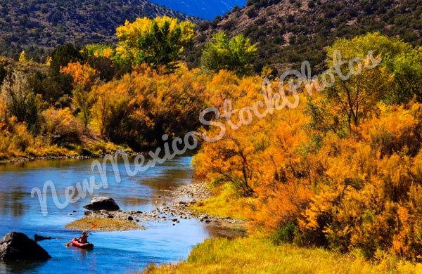 Fall: Rio Grande Gorge with Rafter