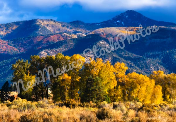Fall: Arroyo Seco Field and Mountains I